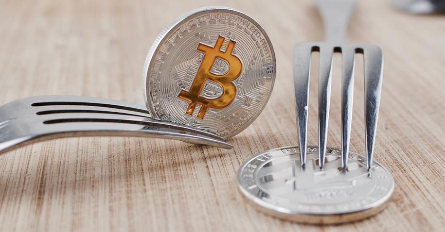 Bitcoin e suas vertentes